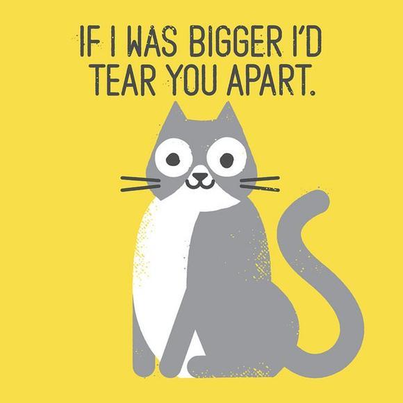 如果我是大貓你早就完蛋惹!