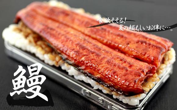 每天用iphone背蓋都提醒自己鰻魚飯有多好吃!
